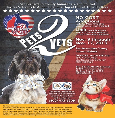 Veterans Day Pets to Vets
