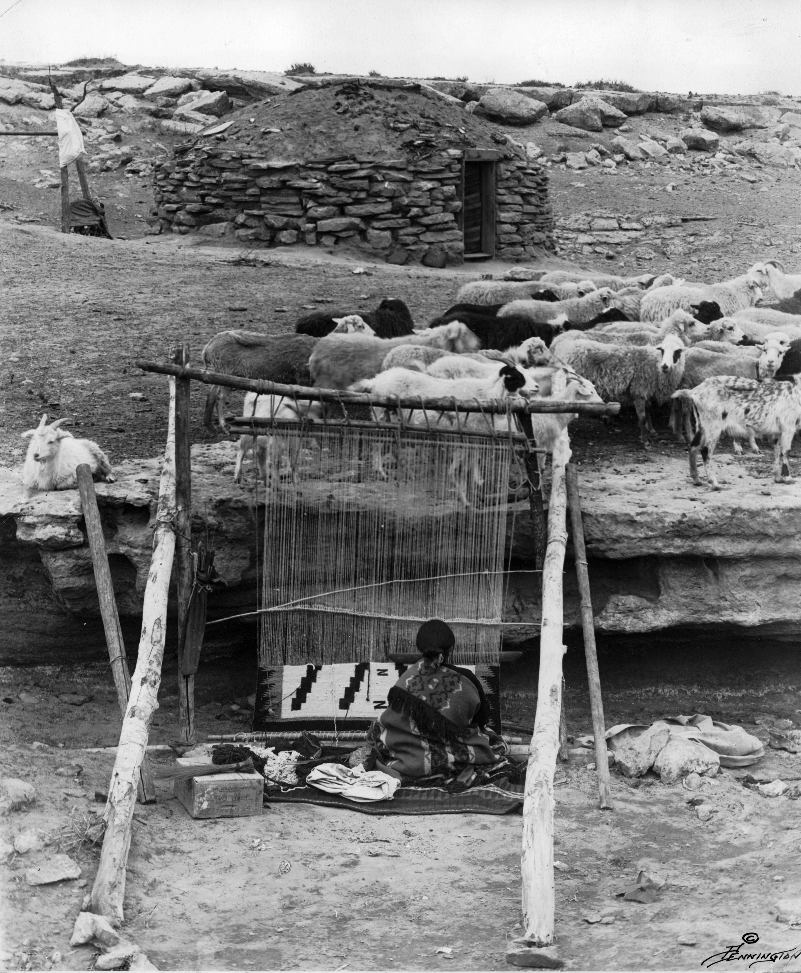 Navajo_sheep_&_weaver