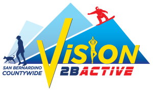 vision-2bactive