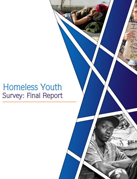 Homeless Youth Survey: Final Report
