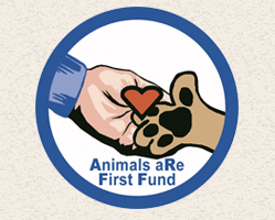 animals are first fund
