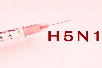 Pandemic flu