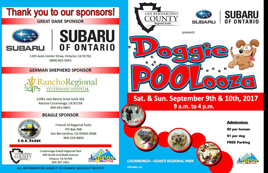 Pet Adoption Event At Doggie Poolooza Department Of Public Health