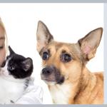 Spay & Neuter Your Pets