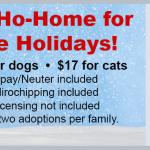 Pet Adoption Event December 14 - 21