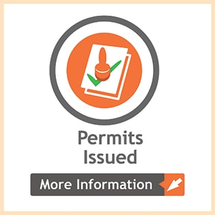 report showing issues permits