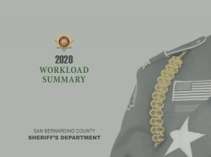 2020 Overall Department Workload Summary Cover