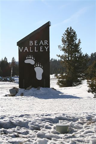 Bear Valley Wellness Free Yoga- July 16th